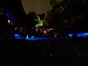 青蓮院の庭園ライトアップ
