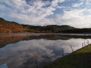 広沢池の紅葉(2)