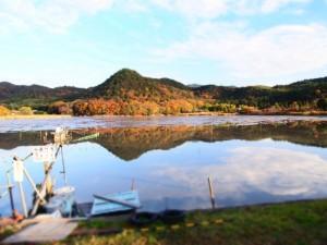 広沢池の紅葉(3)